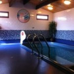The Leisure Suite